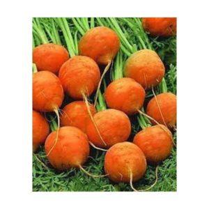 Carrot Parisian Paris Market Organic