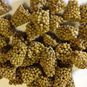 Slow Release Plant Food Fertiliser