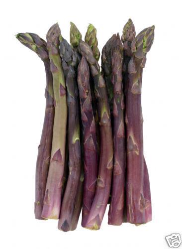 Asparagus Precoce D'Argentuil