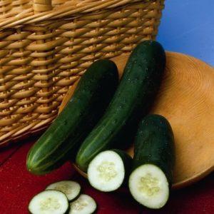 Cucumber Perfection