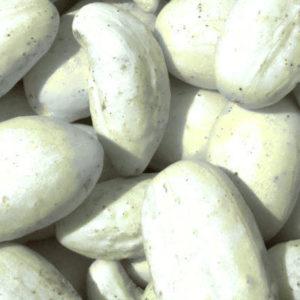 Cucumber White Pickle Mini