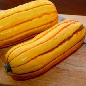 Delicata Squash Organic