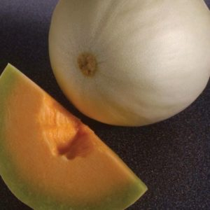 Melon Honeydew Orange Flesh – Temptation Organic