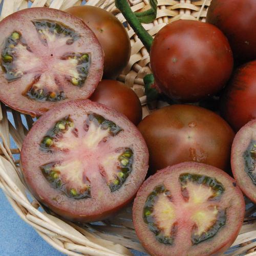 Vegetable Black Russian Tomato