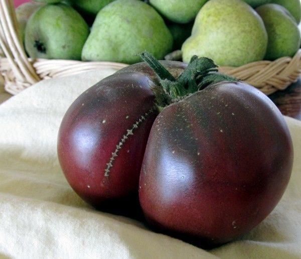Tomato Brandywine Black