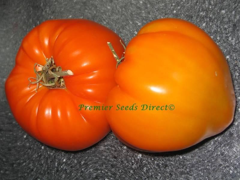Tomato German Orange Strawberry