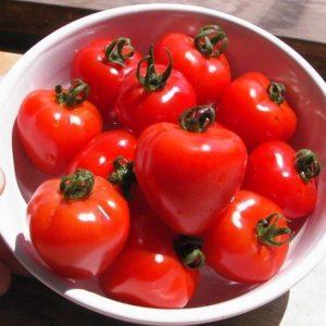 Tomato Tomatoberry F1