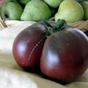 Tomato Brandywine Black Organic