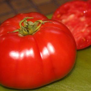 Tomato Delicious Organic