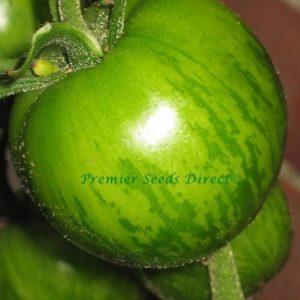 Tomato Green Zebra Organic