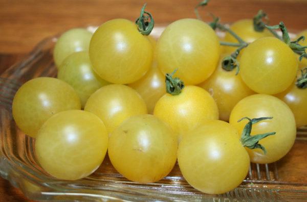 Tomato White Cherry Organic