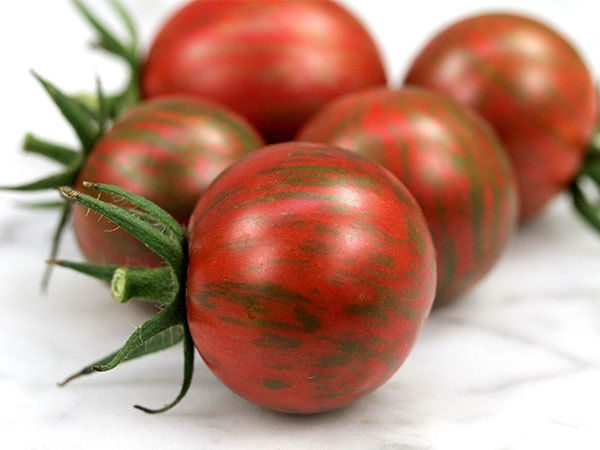 Tomato Cherry Artisan Purple Bumblebee