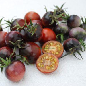 Tomato Cherry Indigo Blue Berries