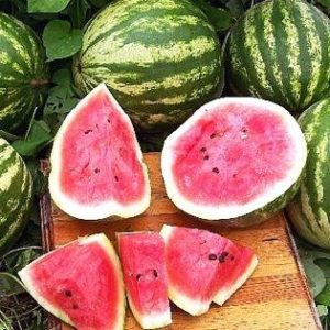 Water Melon Cal Sweet