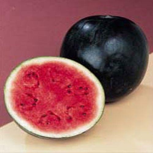 Water Melon Sugar Babe Organic