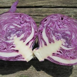 CABBAGE RED EXPRESS ORGANIC