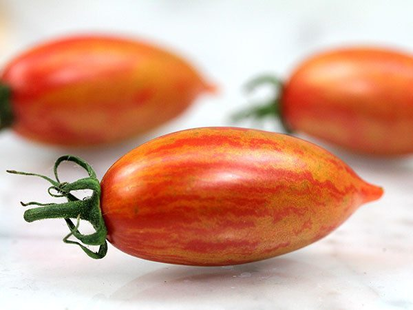 Tomato Cherry Artisan Pink Tiger new