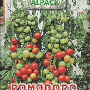 Pictorial Packet Cherry Tomato Gartenperle