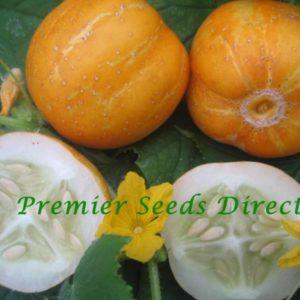 Cucumber Crystal Lemon organic new