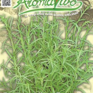 Herb Tarragon Pictorial Packet