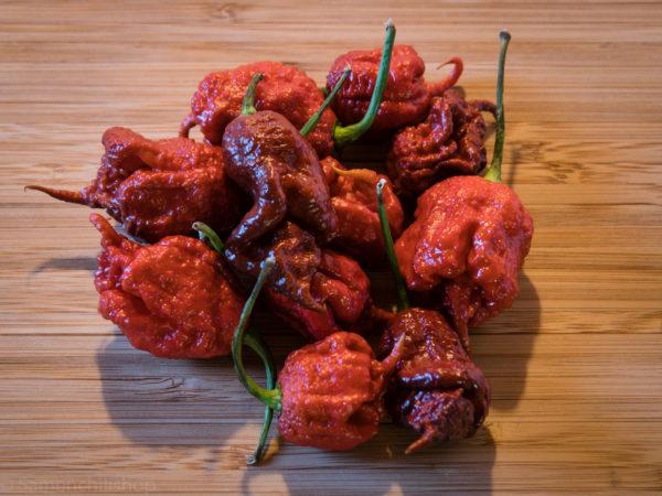 Hot Chili Pepper Chocolate Carolina Reaper.