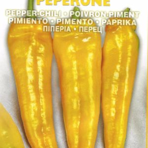 Pepper Sweet Corno Di Toro Giallo