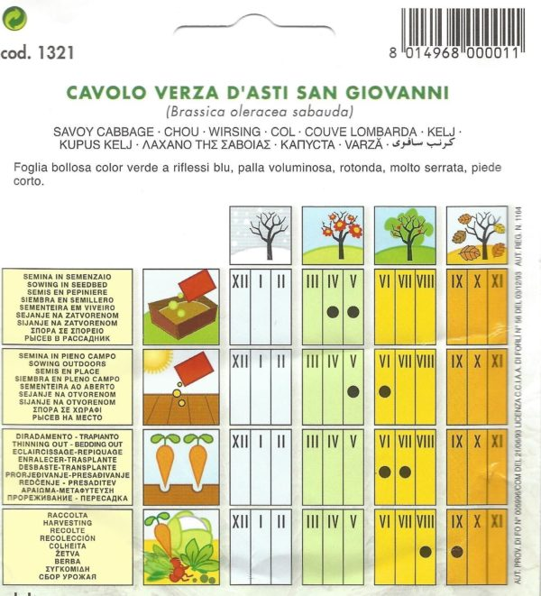 Pictorial Packet CABBAGE SAVOY ASTI SAN GIOVANNI