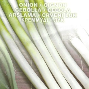 Pictorial Packet ONION WHITE LISBON