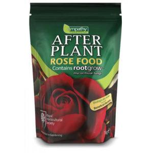 ROSE FOOD EMPATHY AFTER PLANT WITH ROOTGROW MYCORRHIZAL FUNGI
