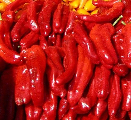 VEGETABLE HOT CHILLI PEPPER ROKITA