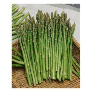 Vegetable Asparagus Mary Washington