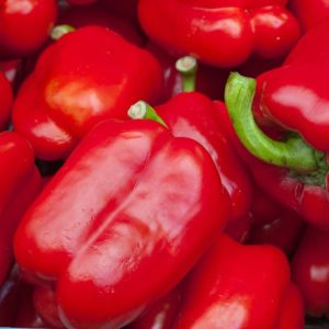 SWEET PEPPER RED - ROBERTINA