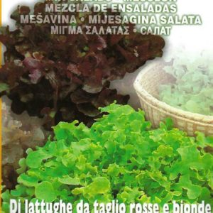 LETTUCE – GOURMET MIXED PICTORIAL PACKET