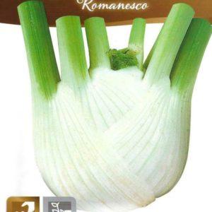 HERB ITALIAN FENNEL ROMANESCO PICTORIAL PACKET