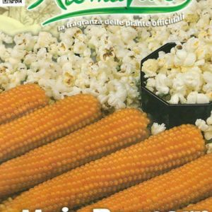 POPCORN – PICTORIAL PACKET