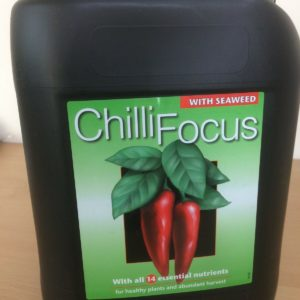 CHILI FOCUS HOT PEPPER PLANT FEED