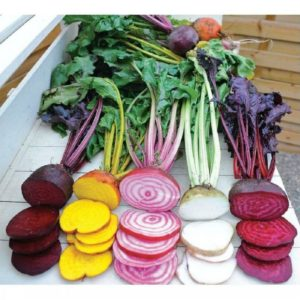 BEETROOT RAINBOW MIX