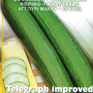 CUCUMBER TELEGRAPH IMPROVED  PICTORIAL PACKET