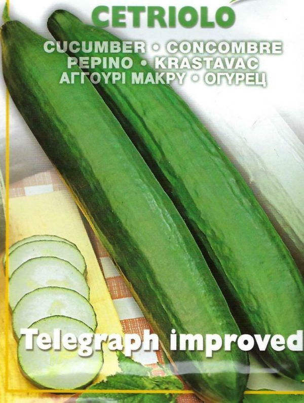 CUCUMBER TELEGRAPH IMPROVED - 2 GRAM ~ APPROX 100 SEEDS - PICTORIAL PACKET